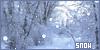 Snow: Winters Treasure