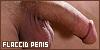 Flaccid Penis: Limp