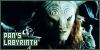 Pan's Labyrinth: Hace Mucho, Mucho Tiempo